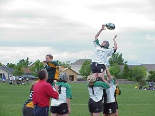 sally_lineout.jpg